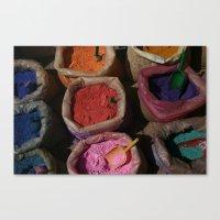 Pigments Canvas Print