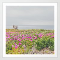 Across The Flowers To Th… Art Print
