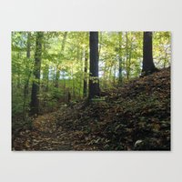 FALL TRAIL SUNRISE (Crescent Trail, Fairport, NY) Canvas Print