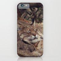 bobcat iPhone 6 Slim Case