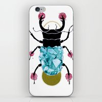 stag beetle  iPhone & iPod Skin