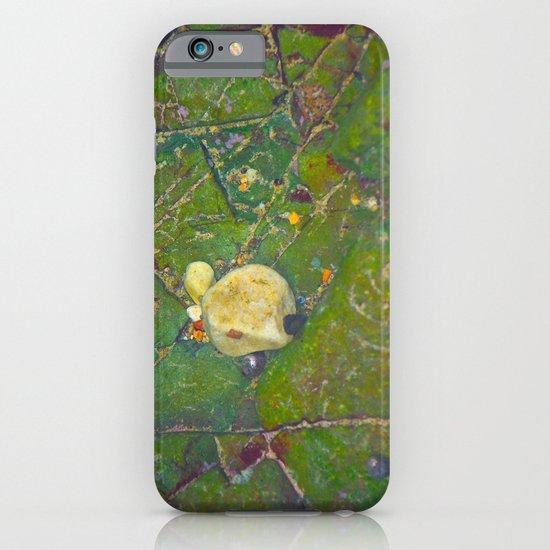 Natures Art 5 iPhone & iPod Case
