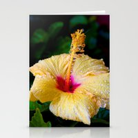 Wet Hibiscus version 2 Stationery Cards
