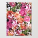 Baby's Breath and Candy Roses Canvas Print