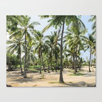 Loads of palm trees Canvas Print
