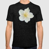 Lemony Cream Grace Mens Fitted Tee Tri-Black SMALL