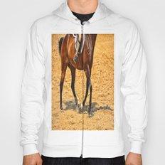 Horse Gallop Hoody