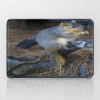 Mr. Squirrel! iPad Case