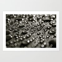 Droplets 3 Art Print