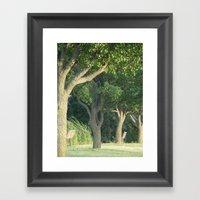 Beyond The Trees Is New … Framed Art Print