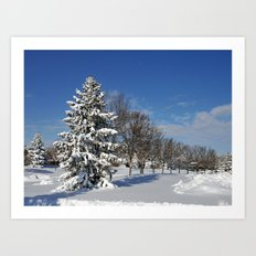 After the Snow 2 Art Print