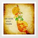 There is no rose without  thorn Art Print