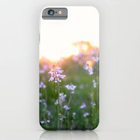 Sunset in Spring iPhone 6 Slim Case