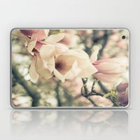 Magnolia Tree Bloom.  Flower Photography Laptop & iPad Skin