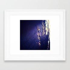 Sunlight & shadows Framed Art Print