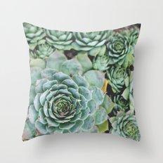 Succulents I Throw Pillow
