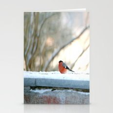 Red Plumage   Stationery Cards