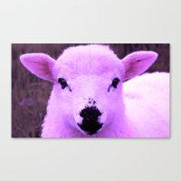 Animals Of The Rainbow Lamb Canvas Print