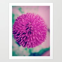 Round Pink Art Print