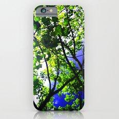 Bright Sky iPhone 6s Slim Case