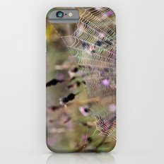 Architecture of a Spiderweb 2 iPhone 6 Slim Case