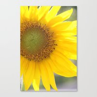 Bright And Sunshiny Day Canvas Print