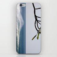 Plumeria iPhone & iPod Skin