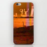 Xagy iPhone & iPod Skin