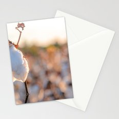 Cotton Field 14 Stationery Cards