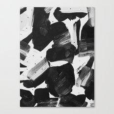 YF04 Canvas Print
