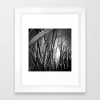 We would be nothing without sunlight Framed Art Print