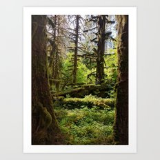 Hoh Rainforest Art Print