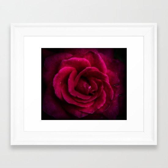 Texture Of A Rose Framed Art Print