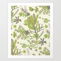 Cream Cradle Flora Art Print