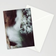 Guadalupe Wave Stationery Cards