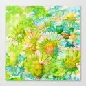 camomile and watercolors Canvas Print