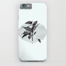 Still Life No.1 iPhone 6 Slim Case