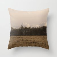 Old Fields Throw Pillow