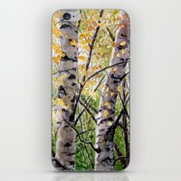 Birches A082 iPhone & iPod Skin