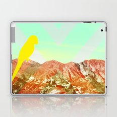 Quinn Laptop & iPad Skin