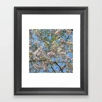 Spring Day VI Framed Art Print