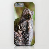 iPhone & iPod Case featuring Living Stone by Tripp Spraker