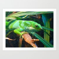 Lounge Lizard Art Print