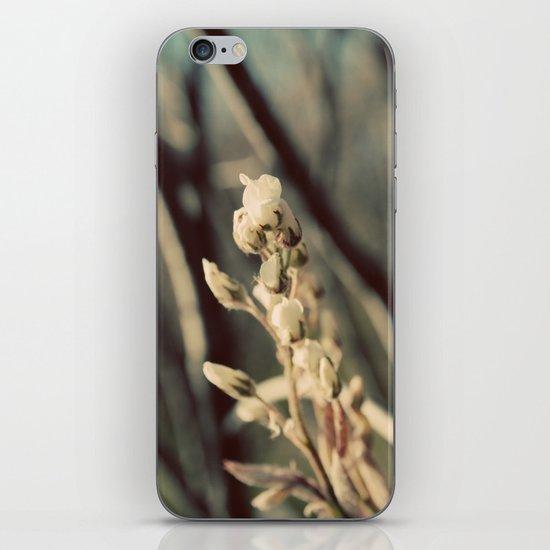 First Bloom iPhone & iPod Skin