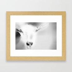 Got your Goat Framed Art Print