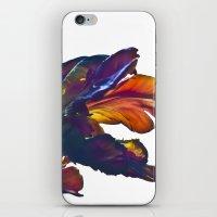 TULIP DREAM iPhone & iPod Skin