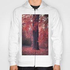 arbre Hoody