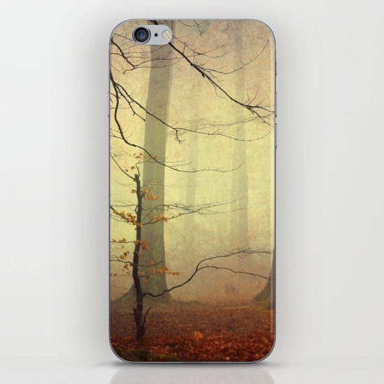 Forest Glow iPhone & iPod Skin