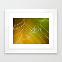 The Spiders Web - Fall Colors Framed Art Print