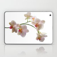 Orchid Spray Laptop & iPad Skin